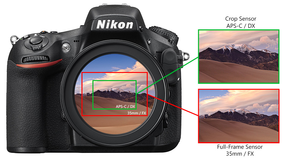 Cropped vs Full Frame Sensor